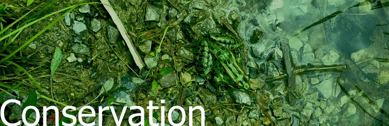 Conservation header